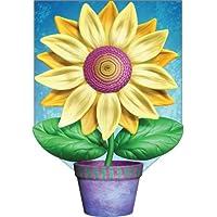 Hi Flower Garden Flag