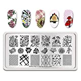 Summer Fruit Nail Art Stamping Template Tropical Punch Pattern Rectangle Image Plate Stamping Polish Needed BP-S-L008 (Color: BP-S-L008)