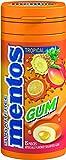 Mentos Gum Pocket Bottle, Tropical, 1.06 Ounce (Pack of 10)