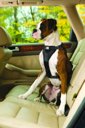 Kurgo Tru-fit Dog Harness, Large (for Dogs 50 to 80 Pounds), Black