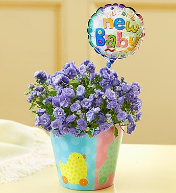 1-800-Flowers - New Baby Celebrations By 1800Flowers front-996136