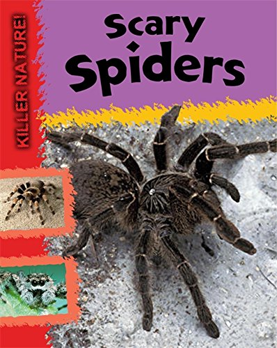 Scary Spiders (Killer Nature)