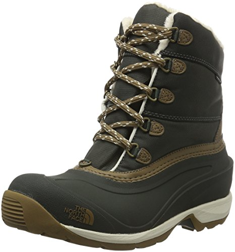 North Face W Chilkat Iii Nylon Eu Scarpe da Camminata, Donna, Multicolore (Marrone/Blkinkgn/Utlybn), 38 1/2