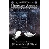 Ultimate Angels Tales of Winged Warriorsby Benjamin Rogers