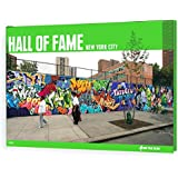 Hall of Fame - New York City (On The Run Books)