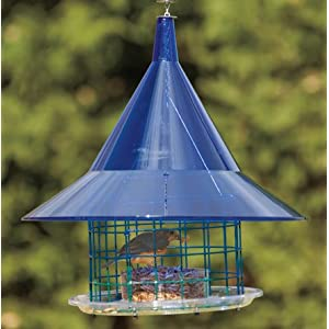 Sky Cafe Bluebird Feeder 16 75 Dia X 20