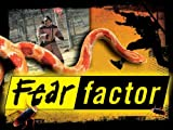 Celebrity Fear Factor