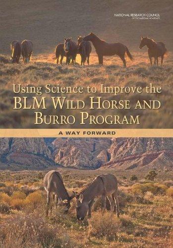 Wild Horse Resource