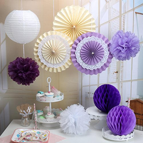 RiscaWin Set for Decoration Paper Fan,Tissue Paper Pom Poms ,Paper Lanterns,Honeycomb Balls (Set of 9) Purple (Crepe Paper Large compare prices)
