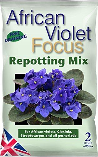 african-violet-focus-repotting-mix-2-litre
