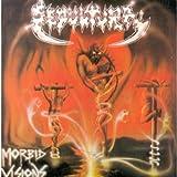 Morbid Visions/Bestial Devasta