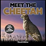 img - for Meet The Cheetah: Fun Facts & Cool Pictures (Meet The Cats) book / textbook / text book