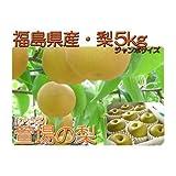 【ジャンボ秋峰梨】福島県産 かやば 梨 (約5kg箱約7~12玉入) 1玉450g以上の大きな梨 ランキングお取り寄せ