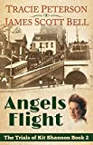 Angels Flight (The Trials of Kit Shannon #2) (English Edition)
