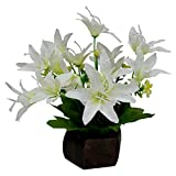 Thefancymart Desktop artificial Lilly Flower arrangement with wood pot for decoration