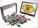 Photo Jigsaw Puzzle of Fake amber