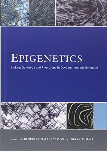 Epigenetics: Linking Genotype and Phenotype in Development and Evolution