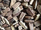 Native Organic Seeds - Bottle Gourd - Round - 5 gm
