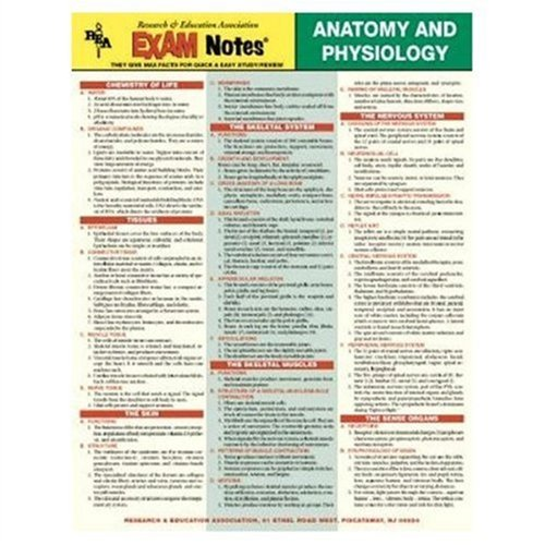 Anatomy and Physiology: Exam Notes