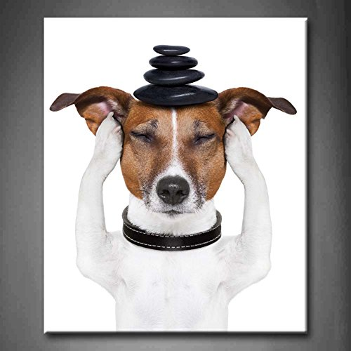 Black And White Dog Meditation With Hot Stones On Top Wall Art Painting The Picture Print On Canvas Animal Pictures For Home Decor Decoration Gift (Stretched By Wooden Frame,Ready To Hang)