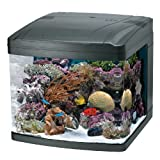 51WdbuKv1cL. SL160  Oceanic 82052 BioCube Aquarium, 29 Gallon
