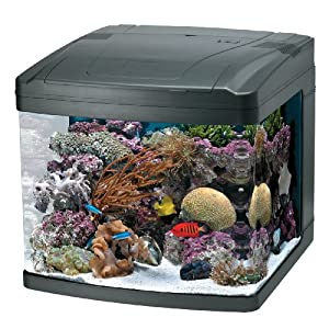 Oceanic 82052 biocube aquarium 29 gallon for Oceanic fish tanks
