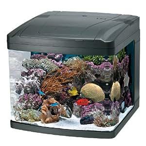 Oceanic 82052 biocube aquarium 29 gallon for 5 gallon fish tank dimensions