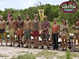 Survivor: Little Miss Perfect