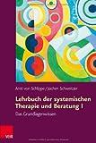 Lehrbuch der systemischen Therapie und Beratung I: Das Grundlagenwissen (Biblioteca Spagnola Di Studi Classici)