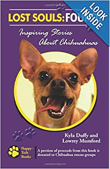 Inspiring Stories About Chihuahuas