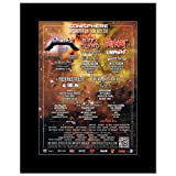 SONISPHERE FESTIVAL - 2011 Final Line Up - Metallica Slipknot Matted Mini Poster - 28.5x21cm