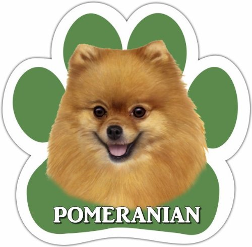 Pomeranian Car Magnet With Unique Paw Shaped Design Measures 5.2 by 5.2 Inches Covered In UV Gloss For Weather Protection
