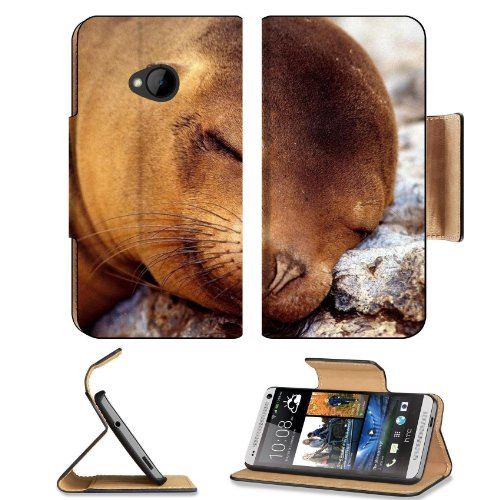 Seal Fur Seal Dream Baby Htc One M7 Flip Cover Case With Card Holder Customized Made To Order Support Ready Premium Deluxe Pu Leather 5 11/16 Inch (145Mm) X 2 15/16 Inch (75Mm) X 9/16 Inch (14Mm) Liil Htc One Professional Cases Accessories Open Camera Hea front-157076