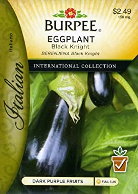 Burpee 69677 Italian - Eggplant Black Knight Seed Packet