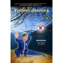 Kung Fu: Northern Shaolin 6