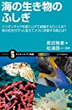 海の生き物のふしぎ イソギンチャクを振り上げて威嚇するカニとは?体の色をガラリと変えてメスに求愛する魚とは? (サイエンス・アイ新書)