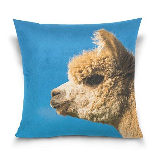 ユキオ(UKIO) 気持ちいい 枕カバー クッションカバー ピローケース 可愛いアルパカ ブルー インテリア 高品質 プリント 新築祝い シンプル コットン おしゃれ 柔らか いい肌触り プレゼント 多用途 人気 抱き枕カバーLサイズ