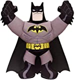 Batman Fighting Buddy