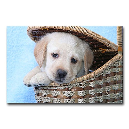 Wall Art Painting Golden Retriever Puppy In A Basket Prints On Canvas The Picture Animal Pictures Oil For Home Modern Decoration Print Decor For Kitchen