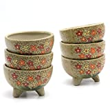 T4U 4 Inch Ceramic Hand Painted Tripod Stand Short Sucuulent Plant Pot/Cactus Plant Pot Flower Pot/Container/Planter Package 1 Pack of 6
