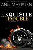 Exquisite Trouble (Iron Horse MC)