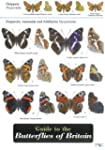Guide to the Butterflies of Britain (...