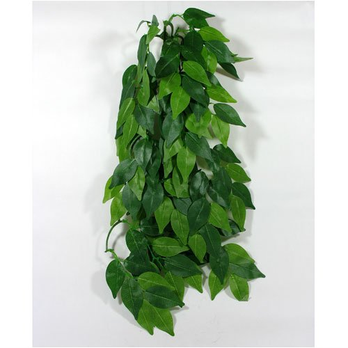 Reptile Vivarium Jungle Silk Plant Decor Ficus Large