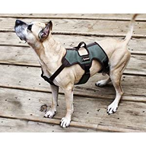 Trekking Dog Harness from ABO Gear