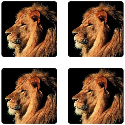 Lion Rubber Square Coaster set (4 pack) Great Gift Idea