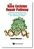 The Base Excision Repair Pathway: Molecular Mechanisms and Role in Disease Development and Therapeutic Strategies