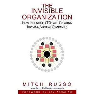 The Invisible Organization Audiobook