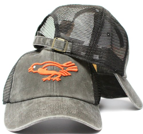 American Needle Baltimore Orioles Raglan Bones Soft Mesh Back Slouch Twill Cap at Amazon.com