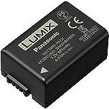 Panasonic DMW-BMB9E Batterie pour Appareil photo bridges  DMC-FZ45, DMC, FZ7 2, FZ48, FZ62, FZ100 & FZ150