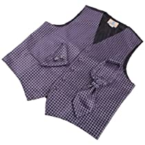 VS2018-S Purple Patterned Gift Ideas Vest Cufflinks Hanky Ascot Tie By Y&G